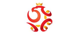 波兰足球新形象
